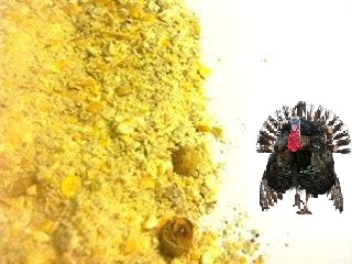 Non-Medicated Organic Turkey Grower Feed
